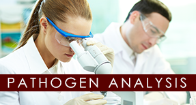Female and Male Researcher - Pathogen Analysis